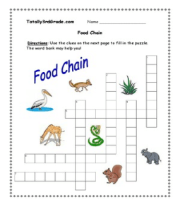 Worksheet Food Chain Worksheets food chain worksheets for kids 3rd grade chain