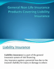 General Non Life Insurance Products