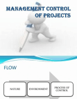 Management Control of Project