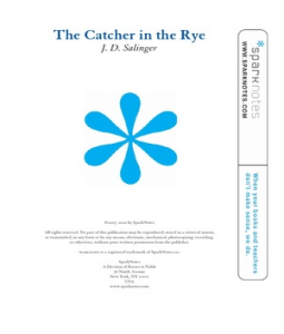 an analysis of the language of catcher in the rye Buy the the catcher in the rye: gcse york notes gcse revision study guide from the official york notes site free p&p and instant online access to the digital version.